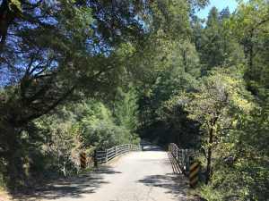 Bridge on Ettersburg Road, on California's Lost Coast.